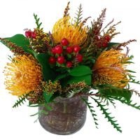Sunset Protea